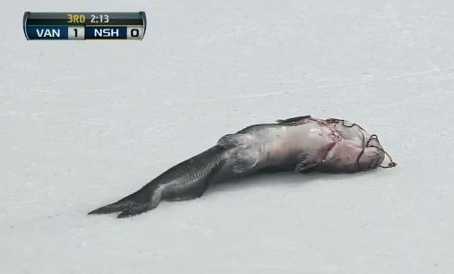 nashville catfish
