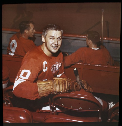 "Wingman: Detroit captain Alex Delvecchio takes a back seat in December of 1963. ""One of the game's true gentlemen,"" says the Hockey Hall of Fame and, true enough, he did win three Lady Byng Trophies to match a trio of Stanley Cups. Also, fyi: ""A popular player in the dressing room, Delvecchio was given the affectionate nickname 'Fats' as a tribute to his round face."" (Photo: Louis Jaques, Library and Archives Canada/e002343752)"